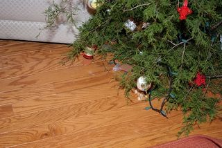 Flickr fallen christmas tree